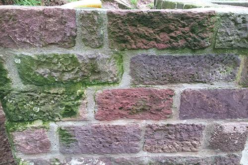 Noch nicht mit Wunderbesen gereinigte Mauer (Vorher-Foto)