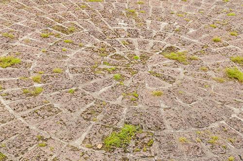Noch nicht mit Wunderbesen gereinigter Boden (Vorher-Foto)